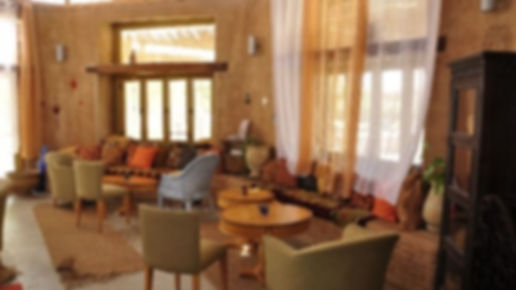 Tee Haus Lotan.jpg
