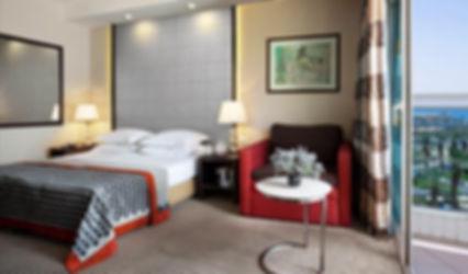 Dan Panorama Room.jpg