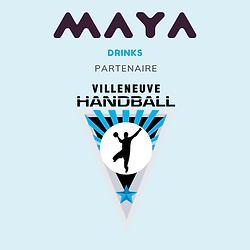 Villeneuve handball partenaire