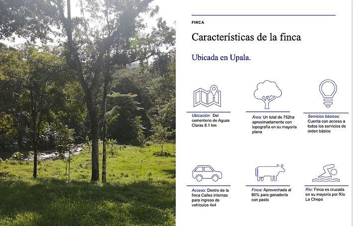CARATACTERISTICAS.jpg