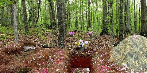 green burial image.jpg