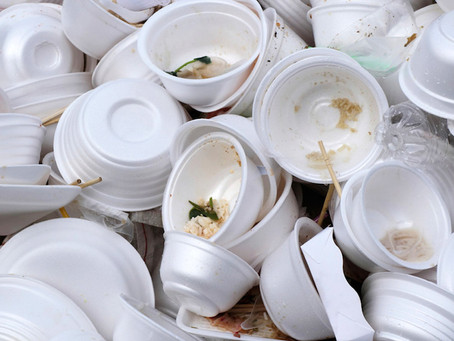 Senadora Maritza Martínez presenta proyecto para que se prohíba el uso de plásticos de uso único y e