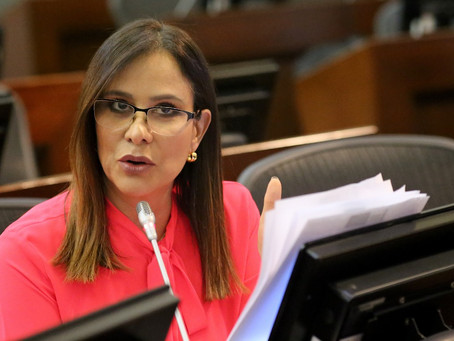 Senadora Maritza Martínez se ratifica en que la mayoría de los créditos anunciados para respaldar pe