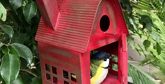 Bird Barn-Red Hot