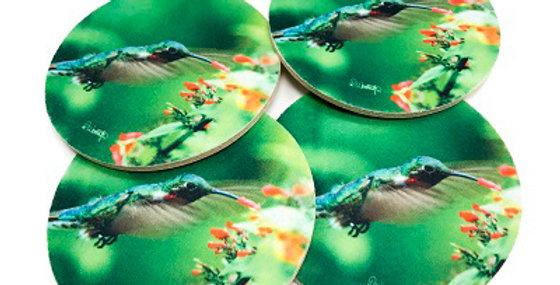 Set of 4 Hummingbird Coasters