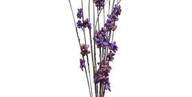 41024 12 Stem Ting Lara Flower Branches - Lavender