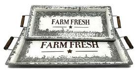 10336 Set of 2 Farm Fresh Trays