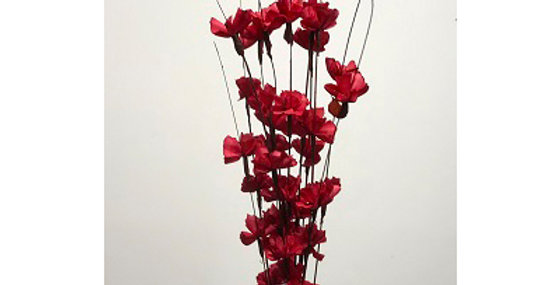 12 Stem RED Buttercup Drop-in Bouquet