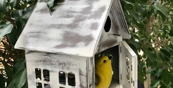 Bird School-Sugar Cookie