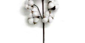20 inch Cotton Spray 9p