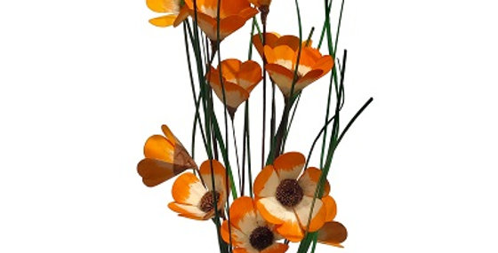 6 Stem Tangerine California Poppy