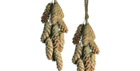 Set of 2 12 Pc FROSTED Pine Cone CLUSTER