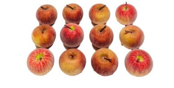 394434 Asst Beaded Apple (12/Box)