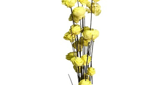 24 Stem SUNKIST American Beauty Rose Drop-in Bouqu