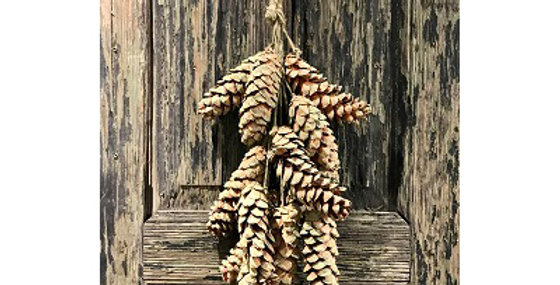 41141 12 Pc SAGE Pine Cone CLUSTER