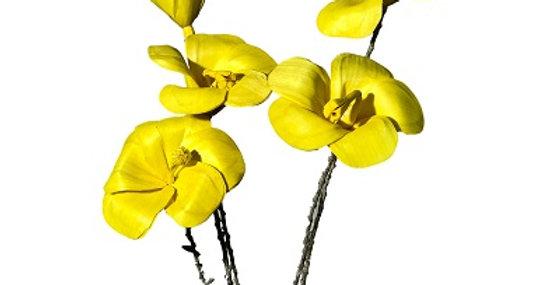 Hibiscus Yellow 5 Stems