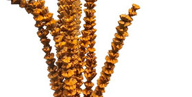 41026 12 Stem Bakuli Flower Branches - Tangerine