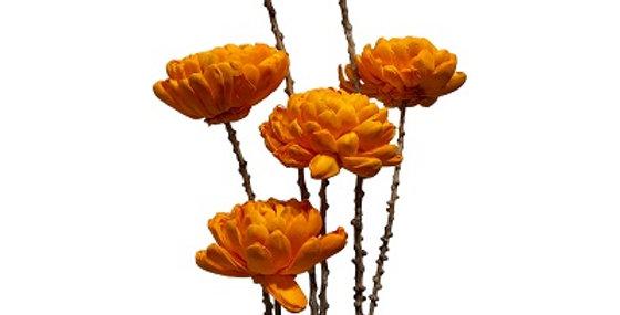 6 Stem Chrysanthemum Flower Branches - Tangerine
