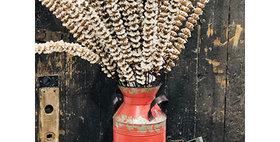 10167 Set of  2 Grain Scoop with Handle