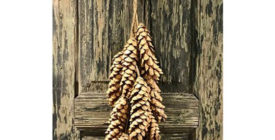 41142 12 Pc GOLD TIPPED Pine Cone CLUSTER