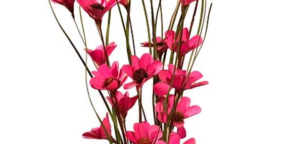6 Stem Pink Poppy