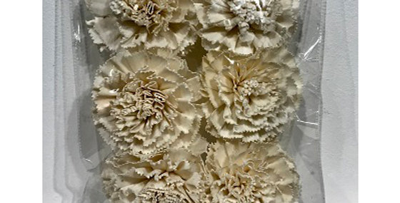 41170 6 pc Carnation Flower Heads