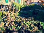 palm_azur-jardinier-cote_azur-11.jpg