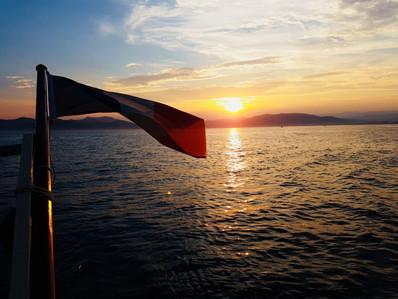 papagei-flag.jpg