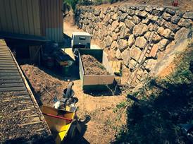 palm_azur-jardinier-cote_azur-09.jpg