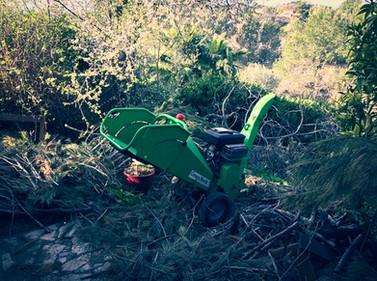 palm_azur-jardinier-cote_azur-05.jpg