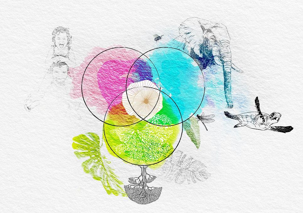 3Philosophie.jpg