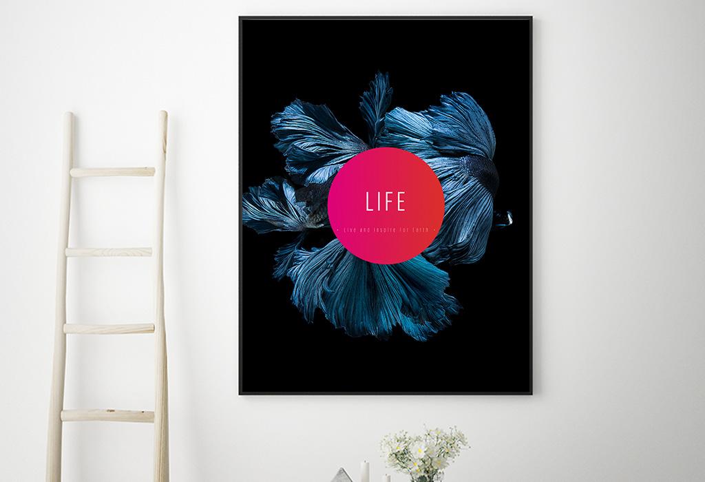 LIFE-Journey-5