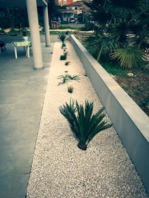 palm_azur-creation-cote_azur-03.jpg