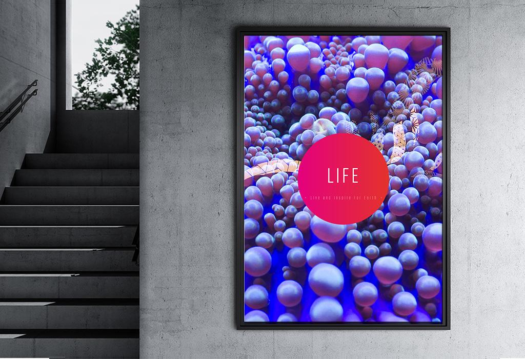 LIFE-Journey-4