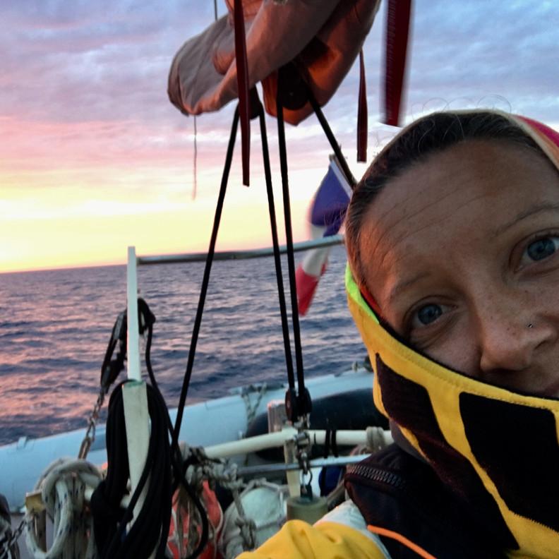 papagei-sailing-2.jpg