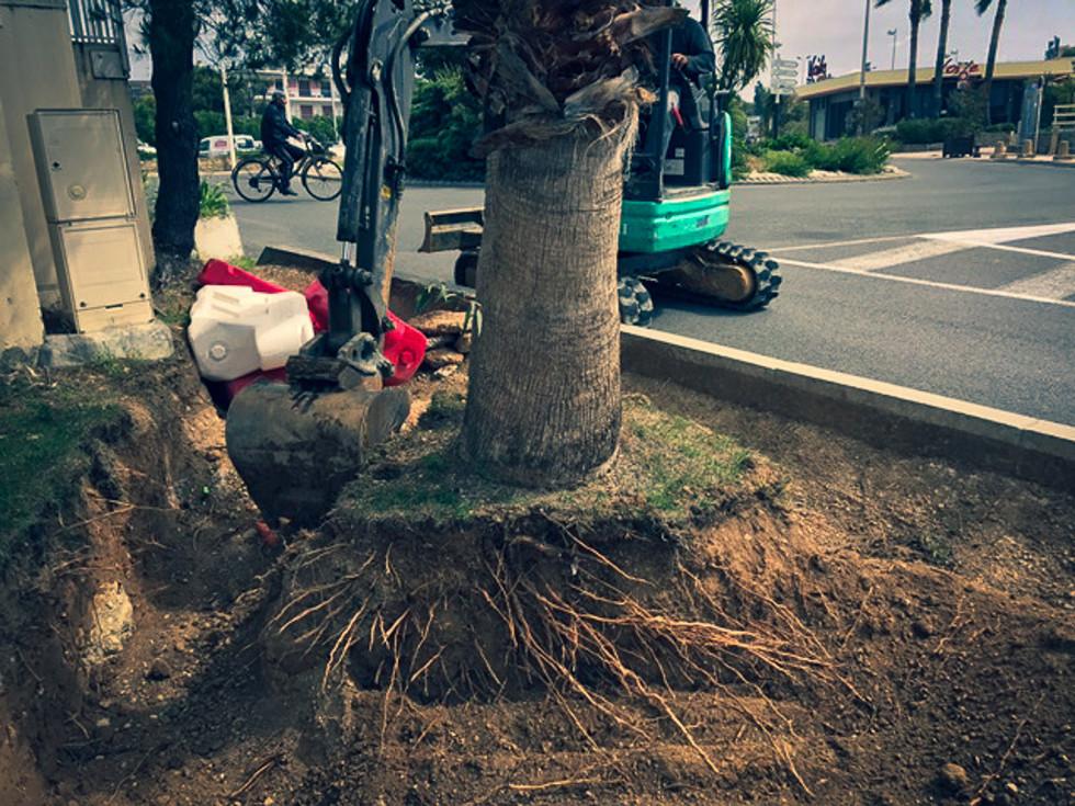palm_azur-terrassement-cote_azur-05.jpg