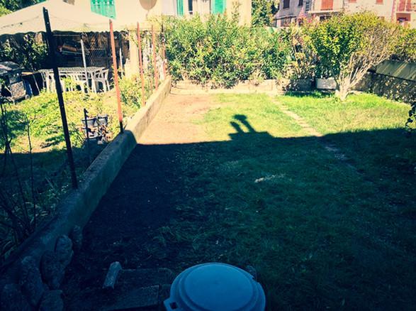palm_azur-jardinier-cote_azur-14.jpg