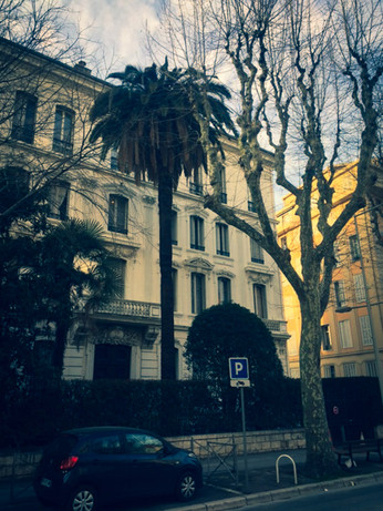 palm_azur-charancon_rouge-cote_azur-01.jpg