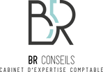 BR Conseils-logo.png