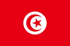 tunisia-flag-png-xl.png