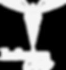InfusionCare_logo_brandwhite.png