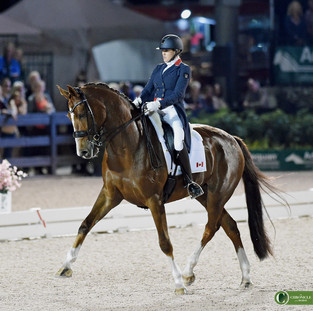 Brittany Fraser Beaulieu ALL IN CDI5* Adequan Global Dressage Festival