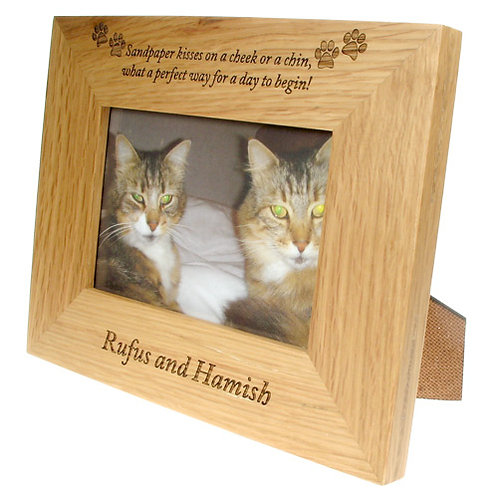 Photo Frame For Cats