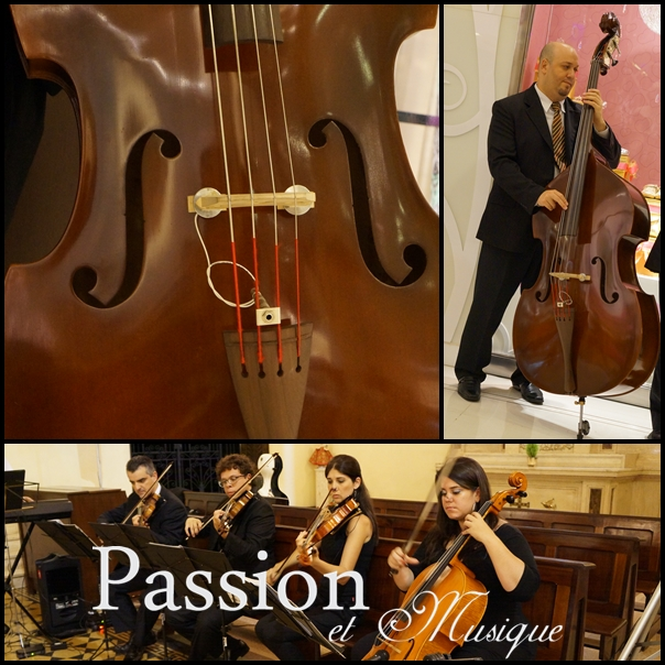 Quinteto de Cordas Passion