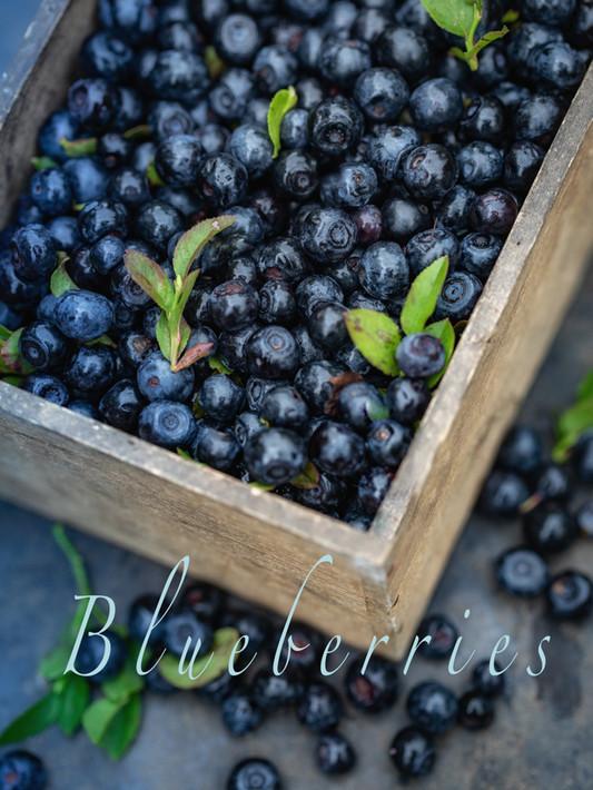 Blueberries-7545-Edit-Edit.jpg