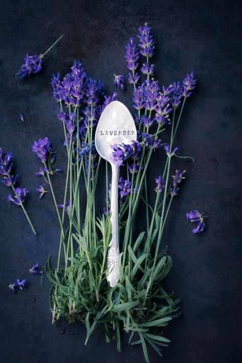 Lavendelblueten-7183.jpg