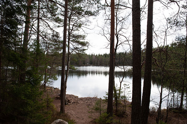 Sipoonkorpi_pienet_kuvat-80.jpg