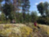 Metsävastaanotto_kallio_pieni.jpg