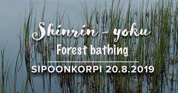 Forest_bathing.jpg
