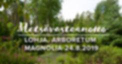 Metsävastaanotto_Magnolia.jpg